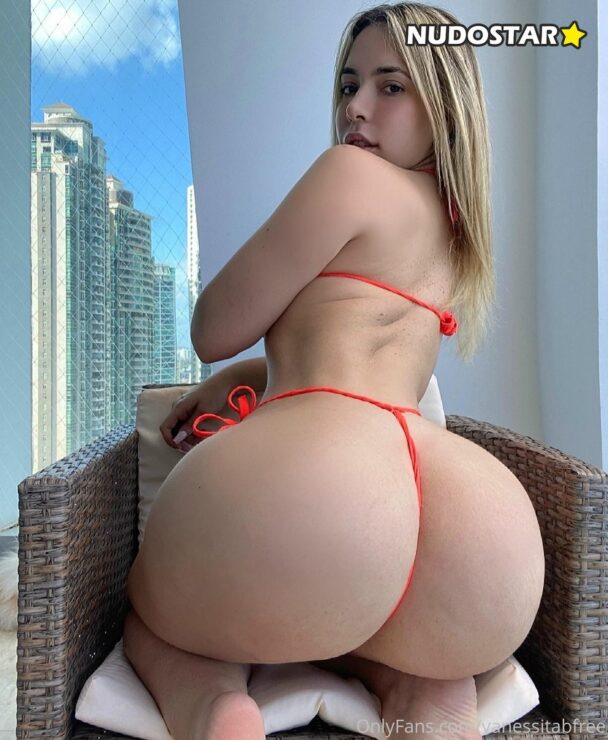 ANAL QUEEN – vanessitabfree OnlyFans Leaks (48 Photos + 7 Videos) 12